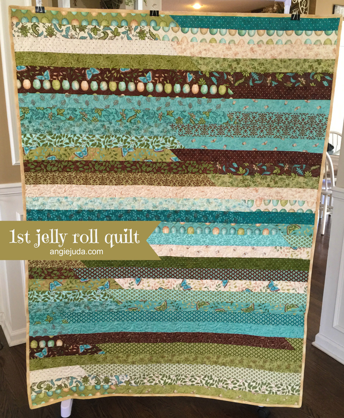 1st Jelly Roll Quilt